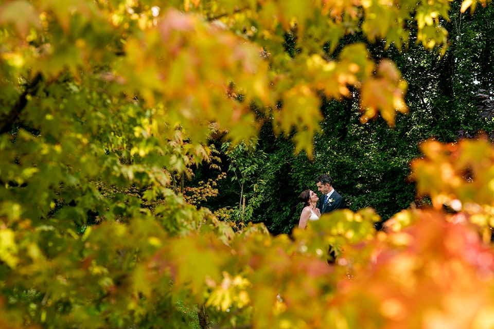 bride and groom in a forest of Autumn colours, Marlfield House wedding Ci Wexford, Ireland. Photos by Paul McGinty , Ghorm Studio Photography.